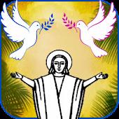 Catholic Pocket Prayers