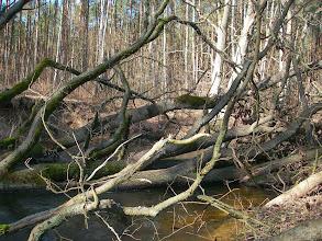 Photo: mocno w rzece