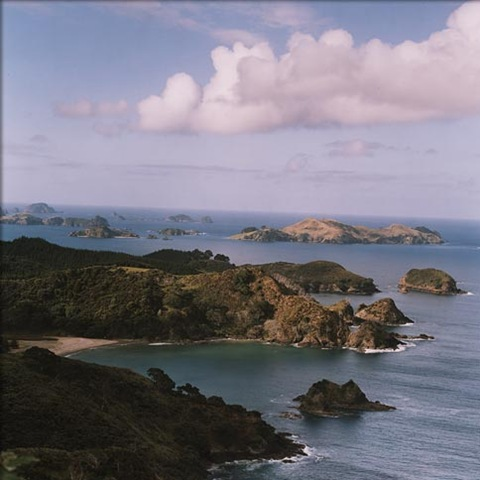 newzealand_gal2