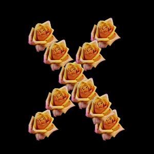 ROSEORX.jpg