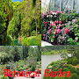 Botanical Garden APK icon