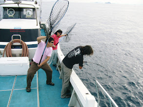 Photo: そして、船頭さんにもヒット! なかなかのサイズかー!? 魚影が見えて、ランディング寸前、 「ぽろっ」 フック外れて去って行った。 50kgぐらい、いやいや40kg、いやいや・・・10kgぐらいでした。  くやじいーー! 後ろでは、ネットを持って盛り上げて頂きましたが・・・。