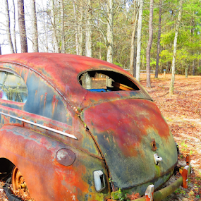 Rusting by Hal Gonzales - Transportation Automobiles ( automobile, rustic, rusty, back, antique,  )