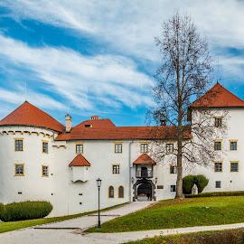 by Mario Horvat - Buildings & Architecture Public & Historical ( sky, slovenia, castle, bogensperk, hystoric )