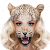 Animal Face Changer file APK Free for PC, smart TV Download