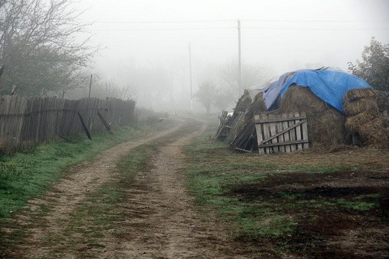 Утром на поселок спустился туман, окутав все вокруг.