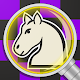 Chess legacy: Play like Morphy. Download on Windows