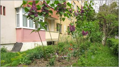 Photo: Turda - Calea Victoriei, Nr: 19-21 - spatiu verde - 2019.04.27