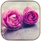 Tema de la rosa en la moneda icon