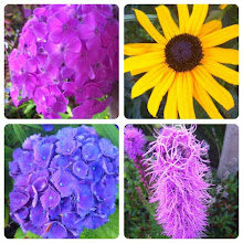 Photo: More beautiful flowers from neighbourhood #intercer #flower #flowers #beautiful #petal #petals #green #pink #white #yellow #blossom #nature #plant #plants #color #colour #pretty #garden #stem #flora #flor #flores #fiori #instanature - via Instagram, http://instagr.am/p/N4_X8jJfoz/
