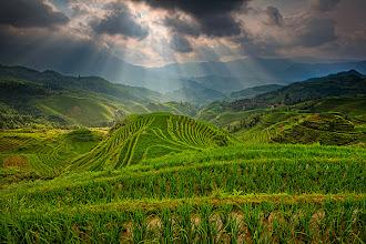 Photo: Longji Rice Terrace - china by Helminadia Ranford http://www.helminadia.net/ https://plus.google.com/u/0/111699855306814304937/posts
