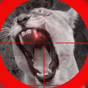 Lion Attack 3D