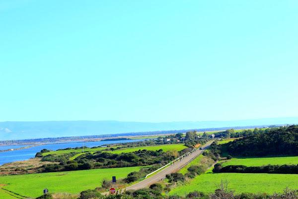 Strada che porta al mare di ariosa