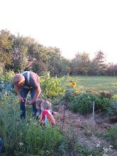 Photo: A garden tour with Joel
