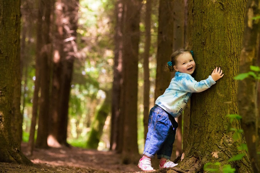 Sleepy Hollow by Jenny Trigg - Babies & Children Children Candids ( child, children, woodland, toddler, photography )