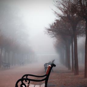 by Sanja Dedić - City,  Street & Park  City Parks