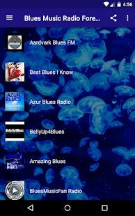 Blues Hudba Navždy - náhled