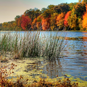 Mirror Lake by Fraya Replinger - Landscapes Waterscapes ( water, wisconsin, autumn, colors, fall, trees, leaves,  )