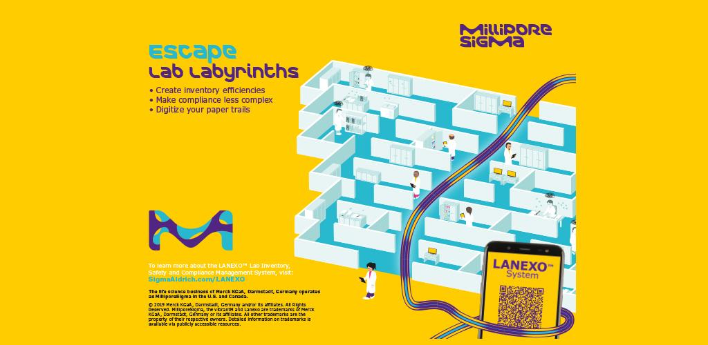 Lan_oxo.pdf   Wiring Diagrams Switch path