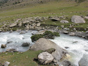 Photo: Gezart ravine, river, stone & tree