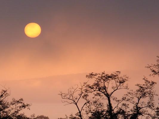 Foschia all'alba. di claudio_sposetti