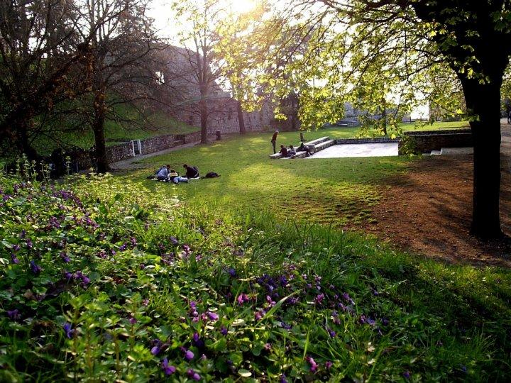 Primavera d'intorno brilla nell'aria di mariarosa-bc