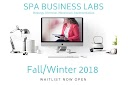 Spa Business Labs group coaching