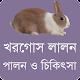 খরগোস লালনপালন ও চিকিৎসা - Rabbit Care & Treatment Download for PC Windows 10/8/7