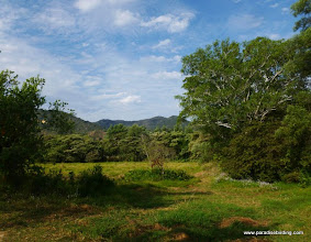 Photo: Pastures and woodlands at Rancho Promavera