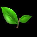 Şifalı bitkiler meyveler icon