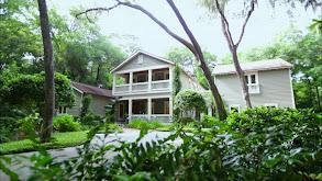 Long Island Family Wants a Quieter Life on Amelia Island thumbnail
