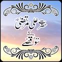 Hazrat Ali K 100 Qissay icon