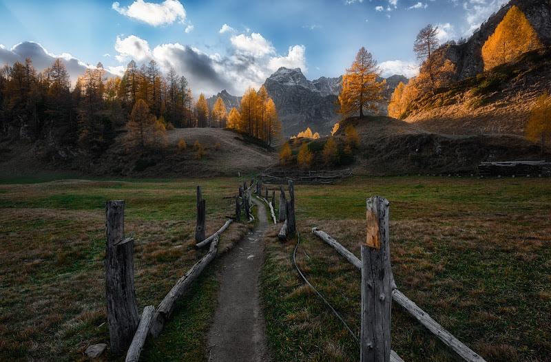 Il sentiero verso la luce  di Luca160