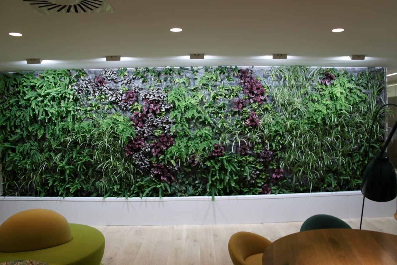Resultado del jardín vertical de weleda