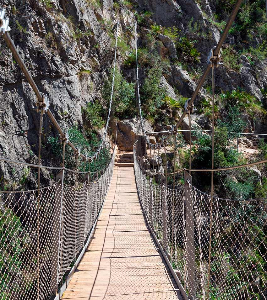 ¡Uno de los diversos puentes colgantes que tiene esta ruta! ¿Te atreves a cruzarlo?