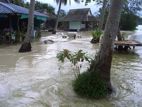 Photo: High tide.