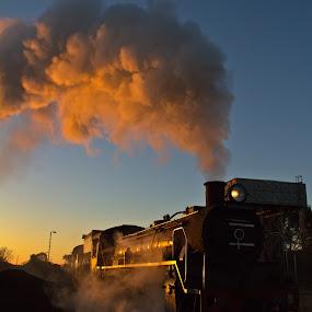 Steam train G by Trippie Visser - Transportation Trains