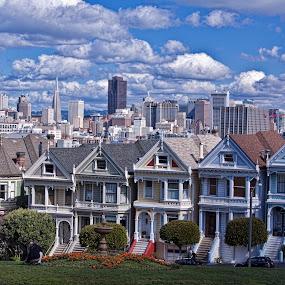 San Francisco Painted Ladies by Pete Bobb - City,  Street & Park  Vistas ( houses, victorian, downtown skyline, san francisco, painted ladies,  )
