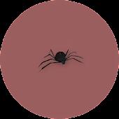 Spider Attack