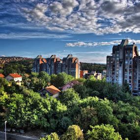 by Dusan Arezina - City,  Street & Park  Neighborhoods ( forest, hdr, belgrade, clouds )