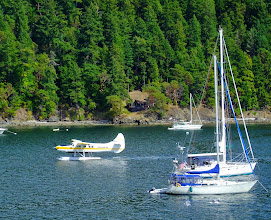 Photo: Watching a float plane land. We see this all the time.