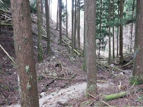 林道へ作業道があるが