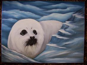 "Photo: Baby Harp Seal, Oil on canvas 18 x 24"", $299.00."