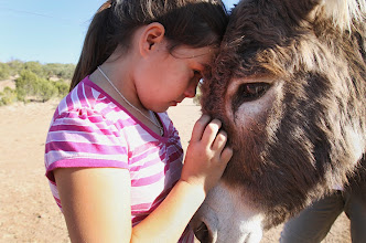 Photo: Cheyenne Rondeaux, 9, holds on to Penelope, a wild burro she helped rescue on Firelight South Ranch in Alpine,Texas. Photo y Fred Covarrubias for USA TODAY.