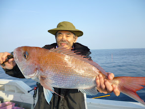 Photo: べっぴん真鯛! 3kgオーバーですな!