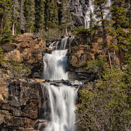 Tangle Creek Falls by Margie Troyer - Nature Up Close Water