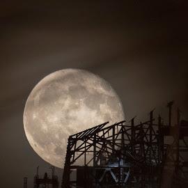 Moon rising by Linda Antenucci - Uncategorized All Uncategorized (  )