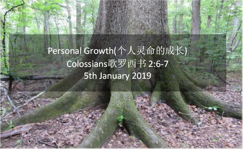 Personal Growth(个人灵命的成长)