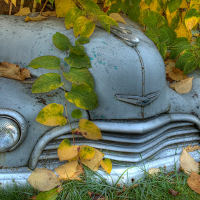 by Dana Styber - Artistic Objects Other Objects ( old, vintage, automobile, travel, relic, chevy )