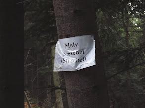 Photo: 12.Mały Szczebel (Strzebel). Czy tutejszego PTTK-u nie stać już na porządne metalowe tabliczki?